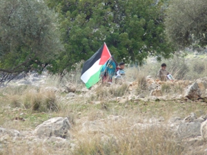 palestine-Nilin