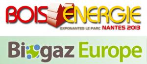 logo biogaz-bois energie